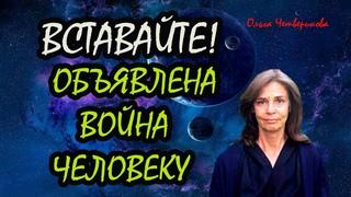 Ольга Четверикова 68088