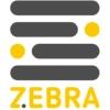 ZEBRA | СДЕЛАНО В САРОВЕ | Интернет-провайдер |