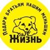 """""""Жизнь"""" - группа  помощи бездомным животным"""