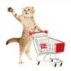 Продажа информационно-цифровых товаров!