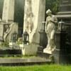 Памятники «Амитье»