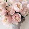 Доставка цветов STEREO FLOWERS
