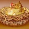 EggIncubator - инкубаторы для яиц, автоклавы