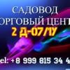Омар Хушвахтов 2д-07/1у