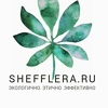 SheffLera.ru