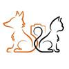 "Фотоагентство ""Fox&Cat"""