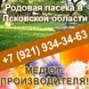 Натуральный мёд с пасеки, купить в СПб