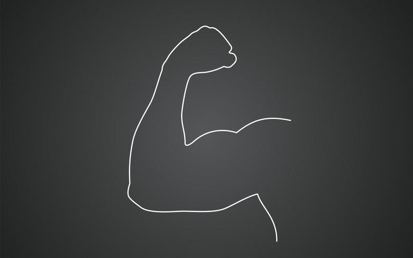 Программа тренировок для набора мышечной массы натуральному атлету