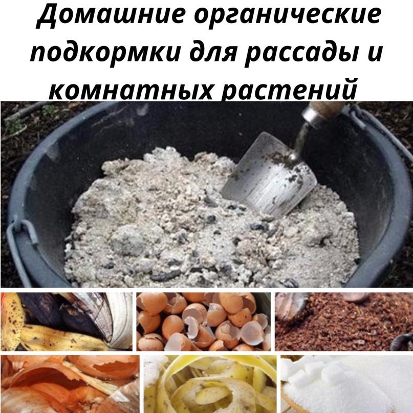 Делаются из кухонных отходов, которые работают на пользу урожая.📌