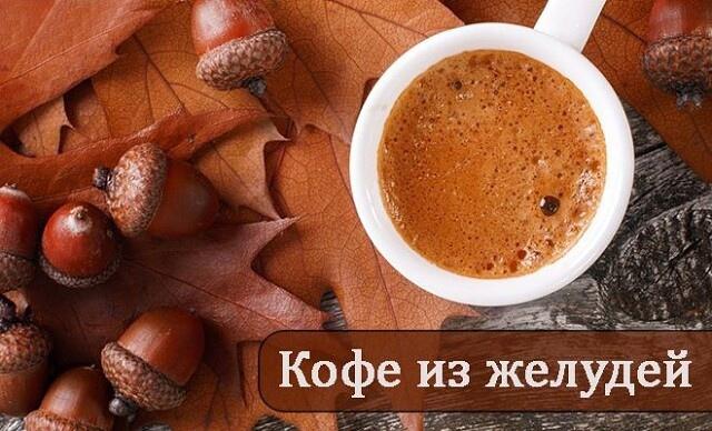 Вкусный и полезный напиток из дубовых желудей