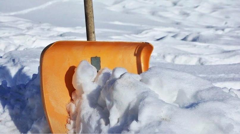 Школьников заставили чистить снег: инцидентом в Саракташе заинтересовался аппара...