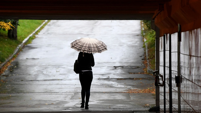 Синоптики предупредили осильных дождях вБеларуси всубботу.