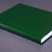Ежедневник недатированный A5 зелёный