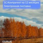 1С:Контрагент на 12 месяцев   электронная поставка