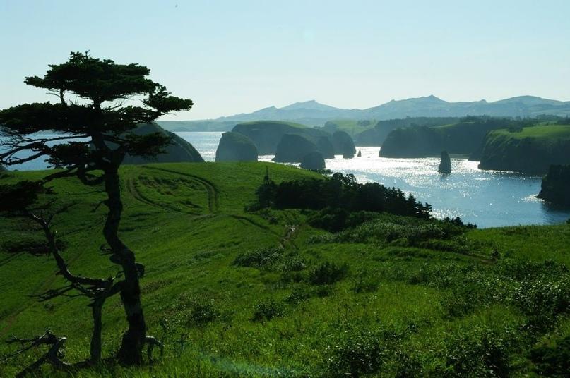 Курильские острова - это амбициозно даже для крупных туроператоров. А для доброй...