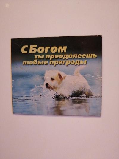Vasilisa Primudray, Донецк