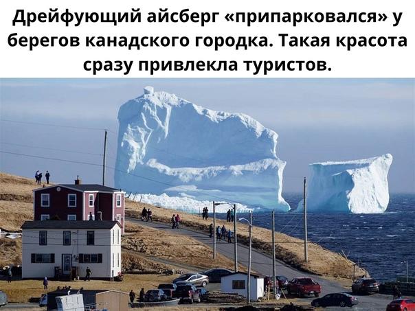 Айсбергам тоже нужен отдых!