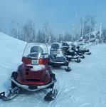 Прогулка на снегоходе на 1 чаc до вершины Гора Белая