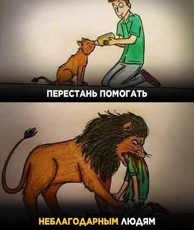 Бек Бек, Алматы