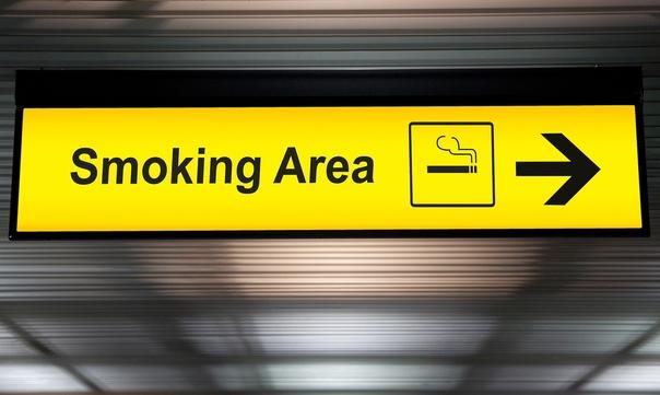 ????В аэропорту «Пулково» снова откроют места для курения.   Вслед за московскими аэропортами, воздушная гавань Северной... [читать продолжение]