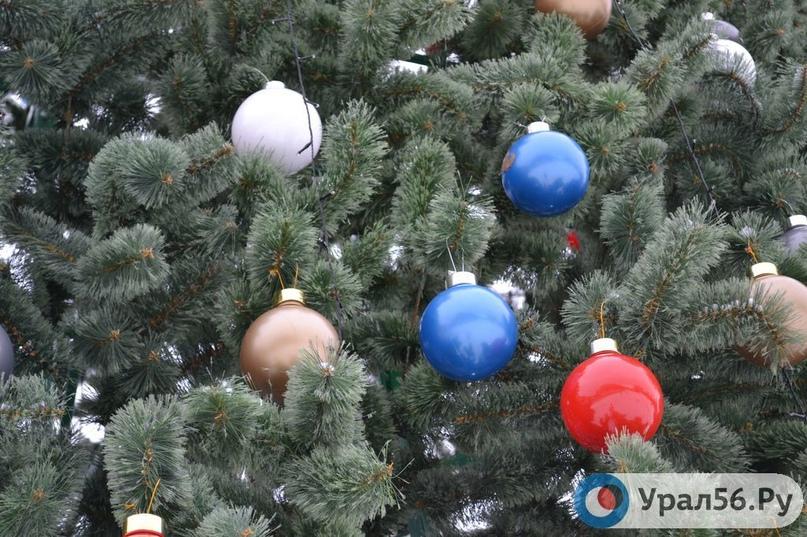 МЧС России не советует держать в квартирах новогодние елки до весны