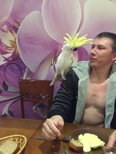 Сергей Калинченко, Арсеньев