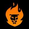 Lion Web | Маркетинговое агентство