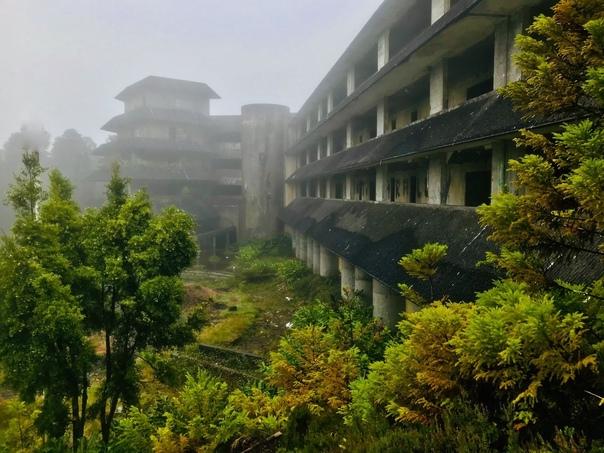 А зорu здесь тихие или как туман уничтожил...