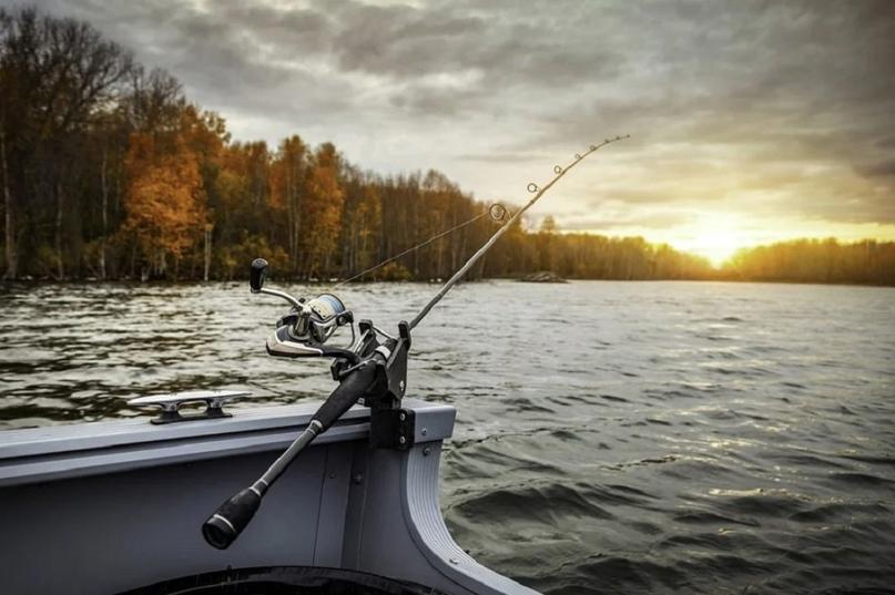 Запрет на рыбную ловлю в Пензенской области снят