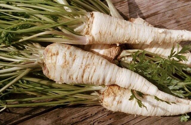Корень петрушки – уникальная витаминная добавка