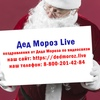 Дед Мороз Live - поздравления по видеосвязи