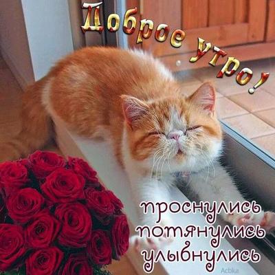 Sergei Shakhtarin, Тюмень
