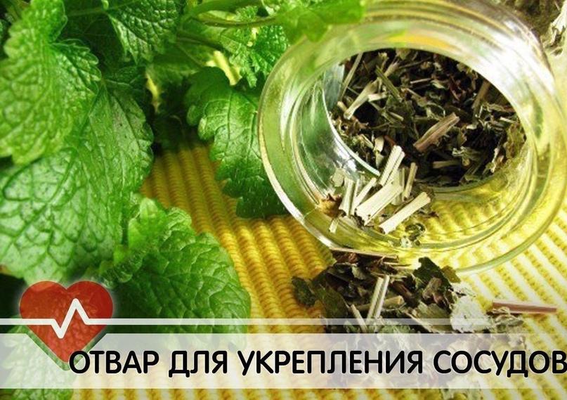 Травяной напиток для укрепления сосудов