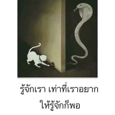 ดี มาก, Bangkok