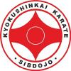 Карате Кёкусинкай в Новосибирске