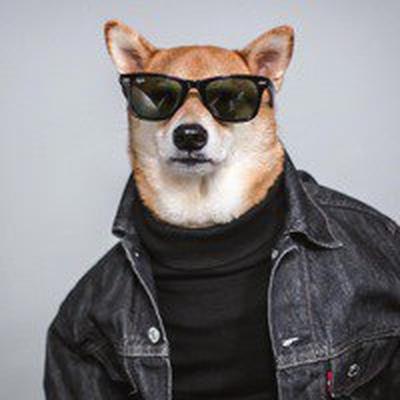 Пёс Серый, Астрахань