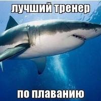 ЕленаМалышева