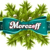 Новогодние подарки Морозофф