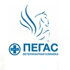 Ветеринарная клиника «Пегас» | Излучинск