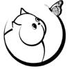 Вокруг кошки :: Кошки и Коты