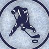 Швырялка — тренировки для хоккеистов в Череповце