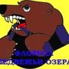 ФЛОРБОЛ Медвежьи Озера