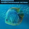 Аквариумы, аквариумистика: продажа, обслуживание