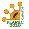 PLAMIC2022