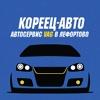 Кореец-Авто - автосервис VAG на Авиамоторной ВАО