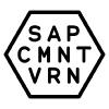 SAP Community Voronezh