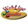 WebLine Studio - Создание сайтов на Wordpress