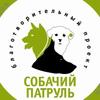 Собачий патруль | Ростов