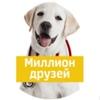 """Ветеринарная клиника """" Миллион друзей """""""