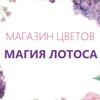 Цветы в Краснодаре, доставка! «Магия Лотоса»